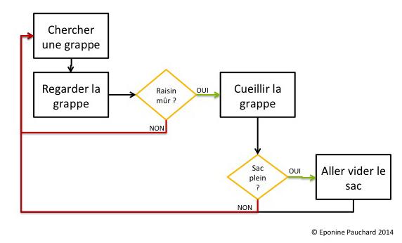 Diagramme de flux d'une chaine de valeur